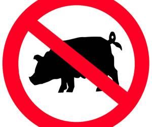 Paziti-va de gripa porcina si prin masuri alimentare