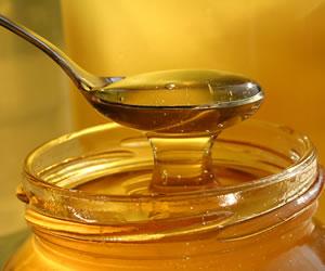 Mierea de albine si binefacerile sale