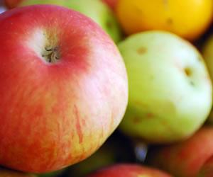 Ce se intampla cu alimentele dupa ce ajung in stomac?